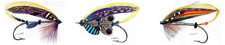 Kunstfliegen & Insekten